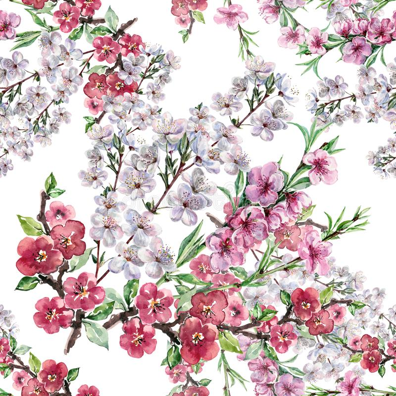 Free Watercolor Flowers Apple Cherry And Peach. Handiwork Seamless Pattern On A White Background. Stock Images - 113504804