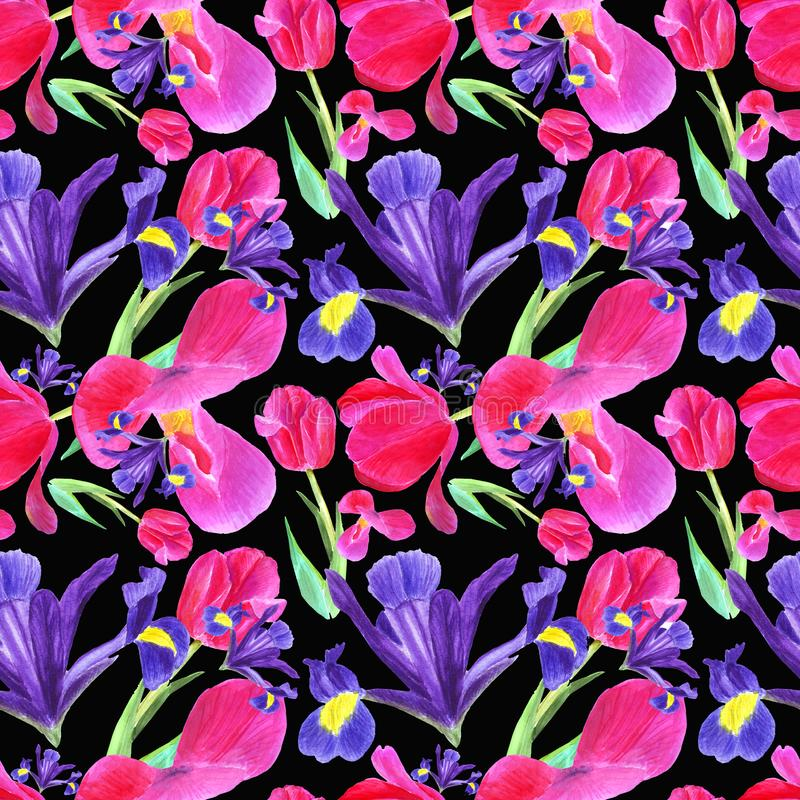 Watercolor  iris, tulip and leaves seamless pattern on black background. Watercolor flowers blue iris and pink tulip and leaves seamless pattern on black vector illustration