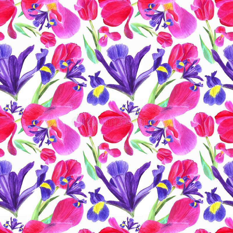 Watercolor iris, tulip and leaves seamless pattern on white background vector illustration