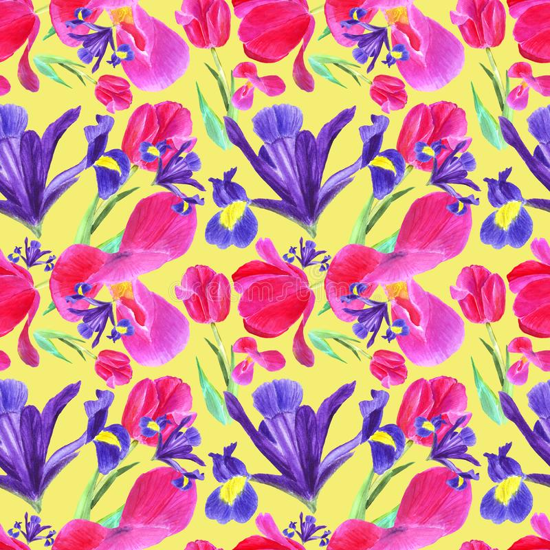 Watercolor iris, tulip and leaves seamless pattern on yellow background royalty free illustration