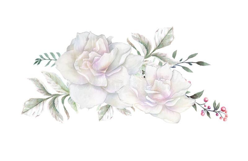 Watercolor flowers. floral illustration, Leaf and buds. Botanic composition for wedding or greeting card. vector illustration