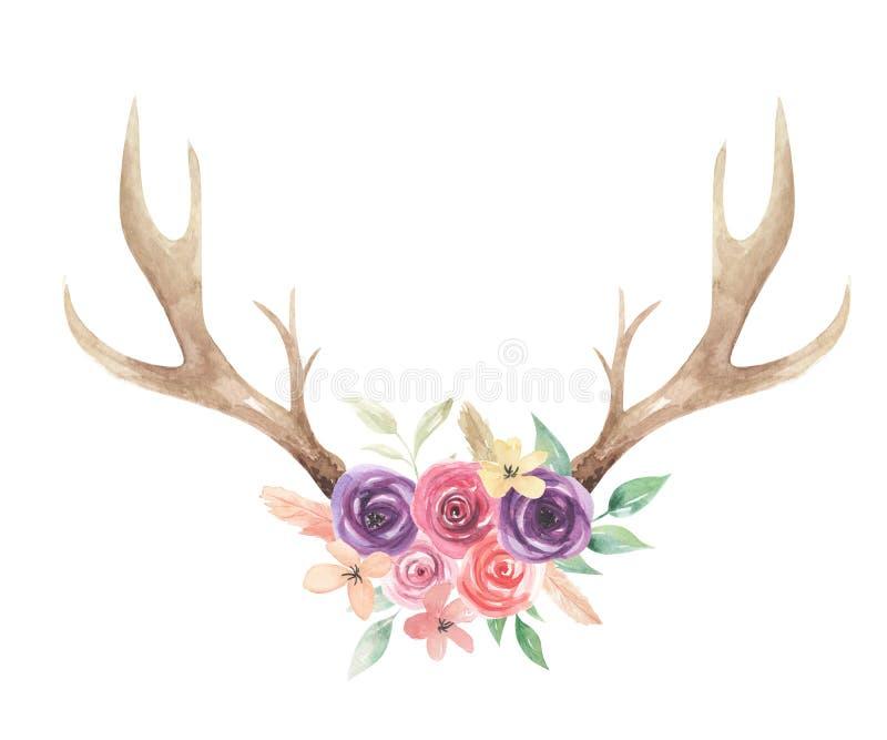 Watercolor Flowers Florals Antlers Deer Stag Horns Bone Painted royalty free illustration