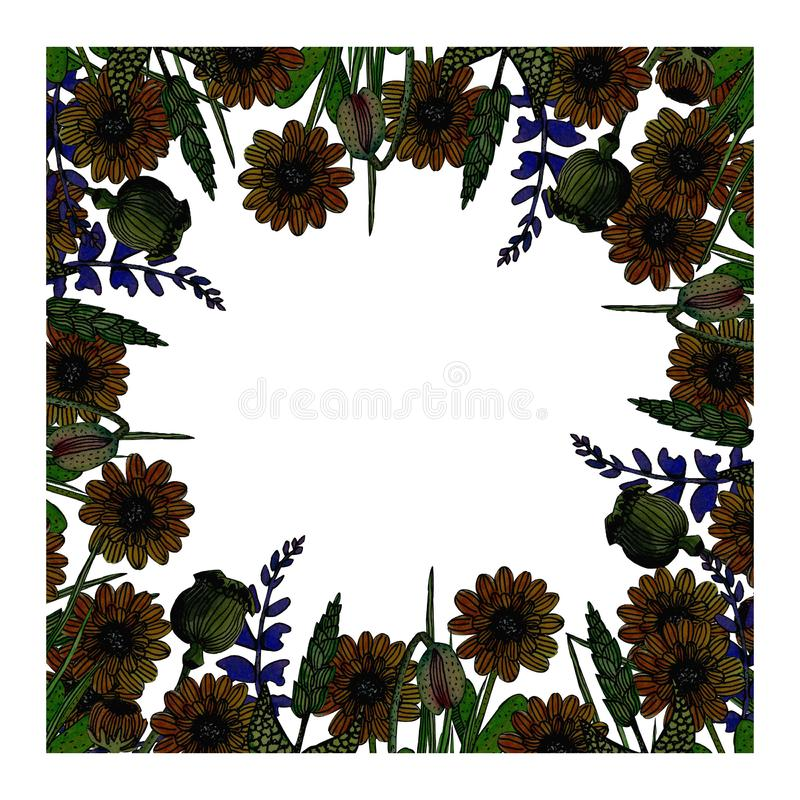 Watercolor flowers illustration. Girly retrostyle frame of watercolor calendula and sage flowers,poppy boxes,poppy buds vector illustration