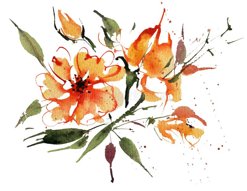 Watercolor flowers isolated on a white background royalty free illustration