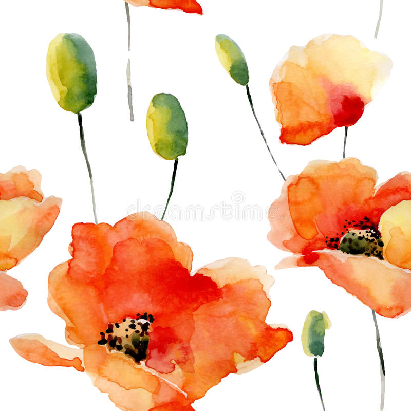 Watercolor flowers seamless pattern with poppies. royalty free illustration