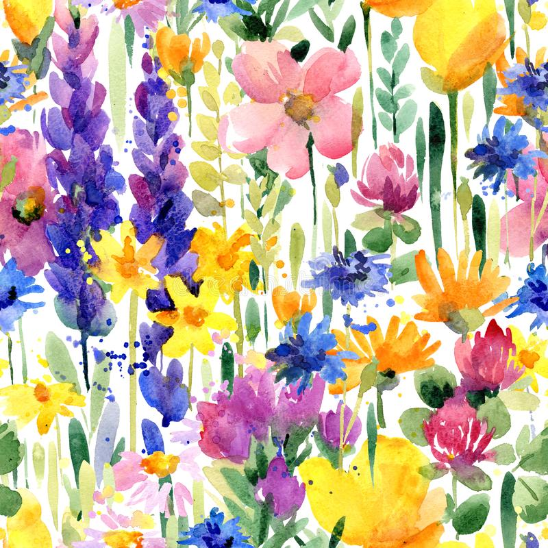 Watercolor flowers seamless pattern. summer field stock illustration