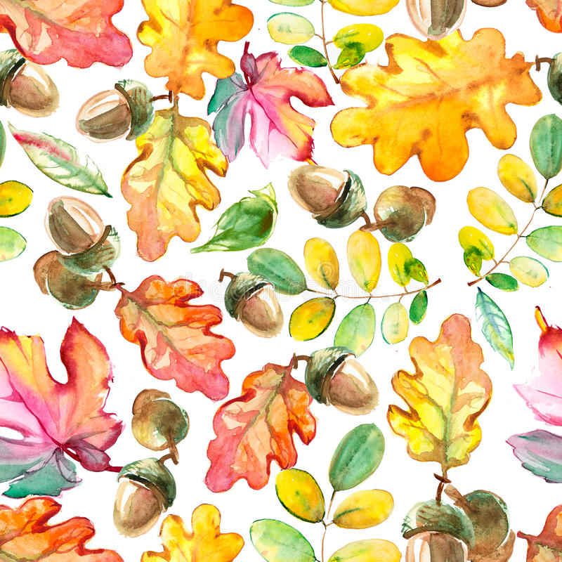 Watercolor forest seamless pattern. Hand painted texture with acorns and leaves. Natural objects on white background stock illustration