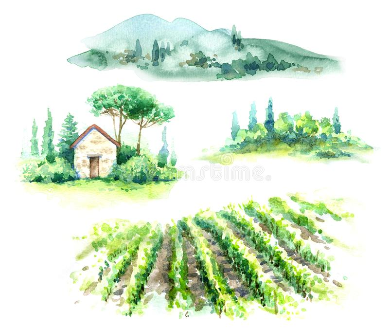 Watercolor Fragments of Rural Scene with Hills, Vineyard  and Trees. Hand drawn fragments of rural scene with vineyard, hill, trees and bushes watercolor sketch vector illustration