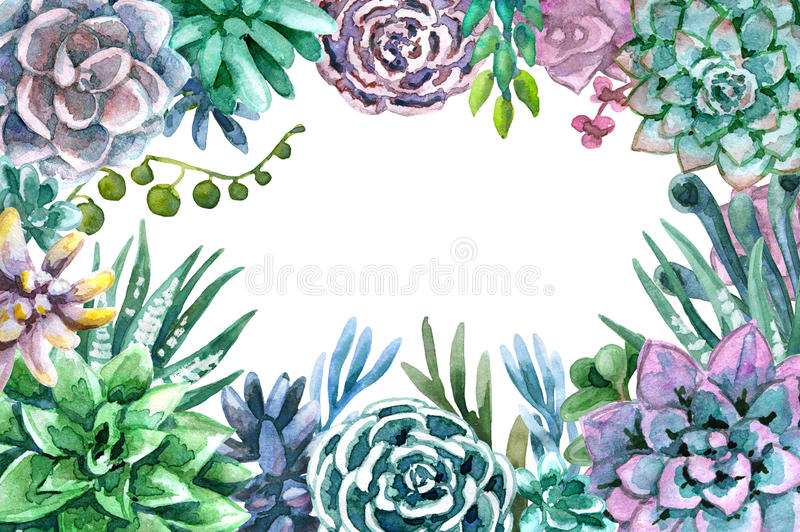 Watercolor Frame Of Succulents Stock Illustration - Illustration of ...