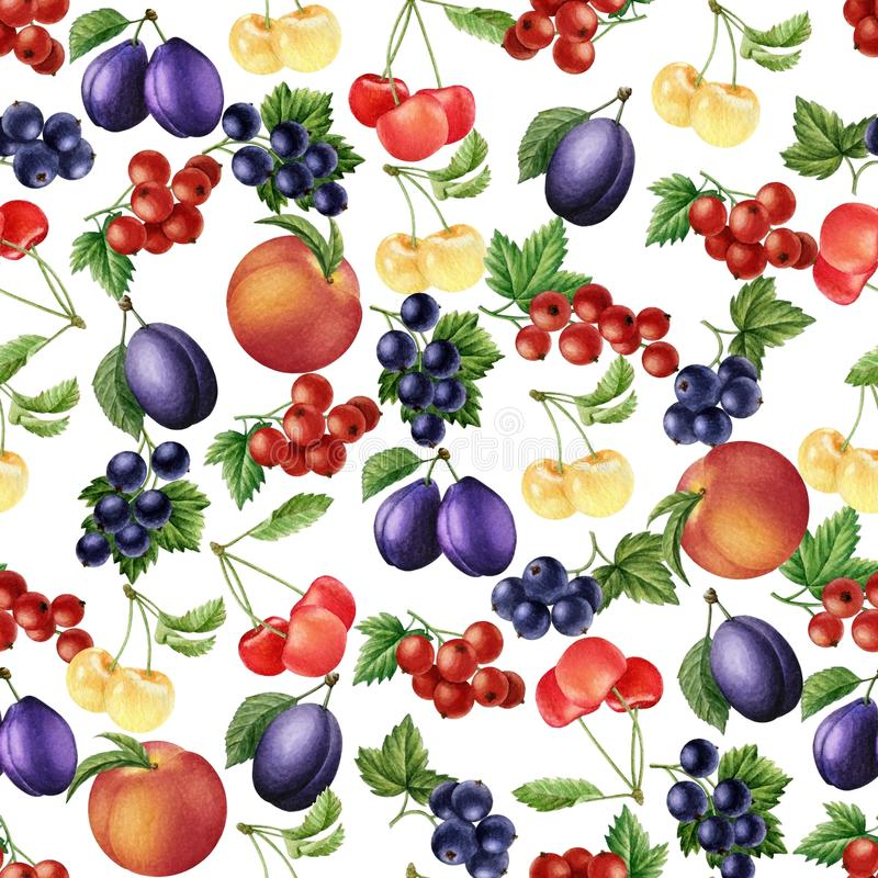 Watercolor fruits and berries seamless pattern. stock image