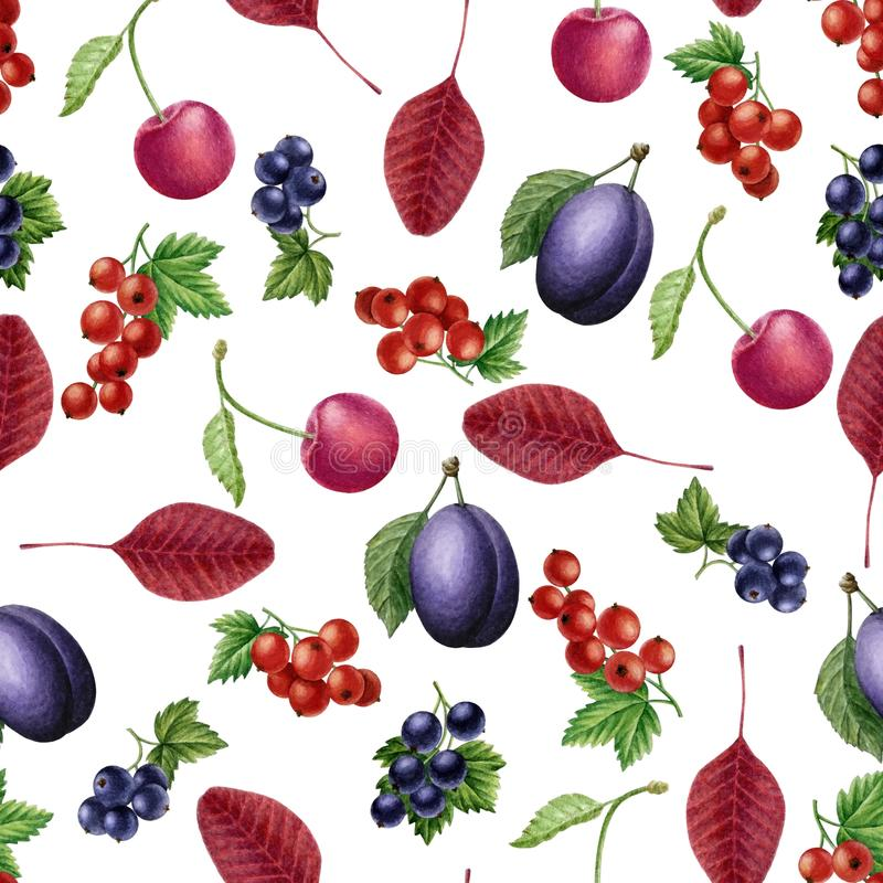 Watercolor fruits and berries seamless pattern. stock photos