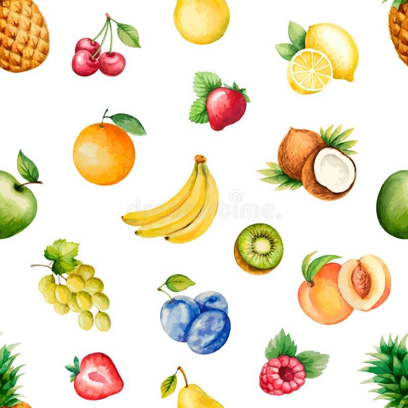 Watercolor fruits royalty free illustration
