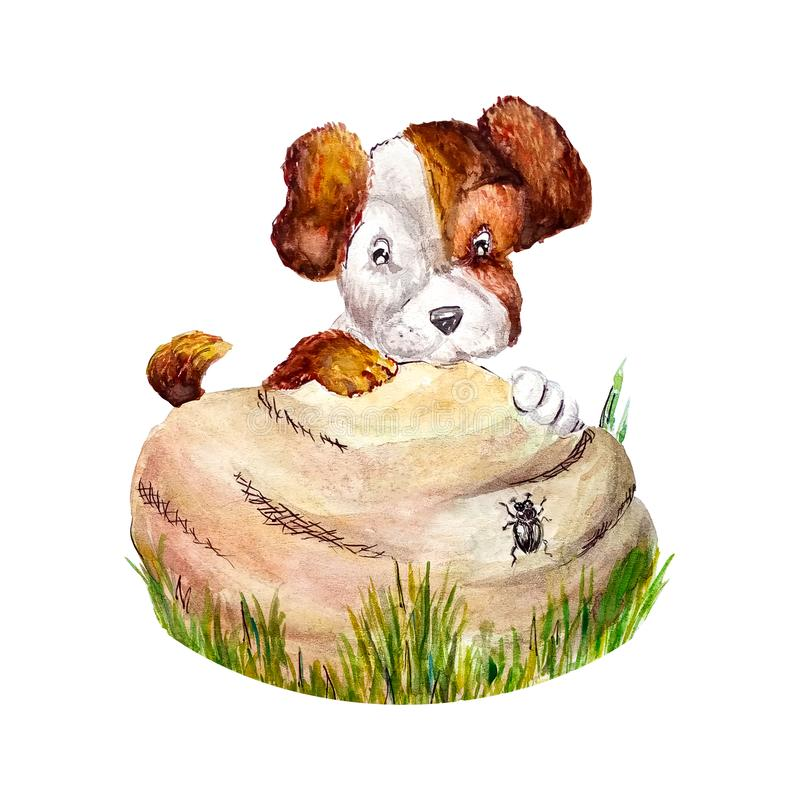 Watercolor funny happy little puppy pooch peeps hiding behind a stone on which the beetle crawls. Isolated on white royalty free illustration