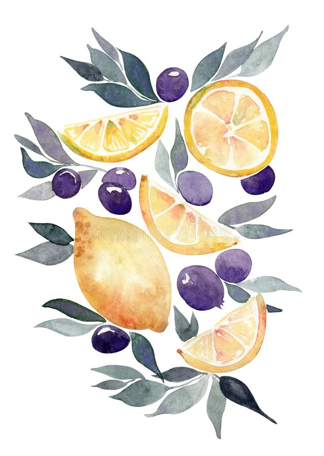 Watercolor gift card with lemons, leaves and some beries. Isolated on a white background vector illustration