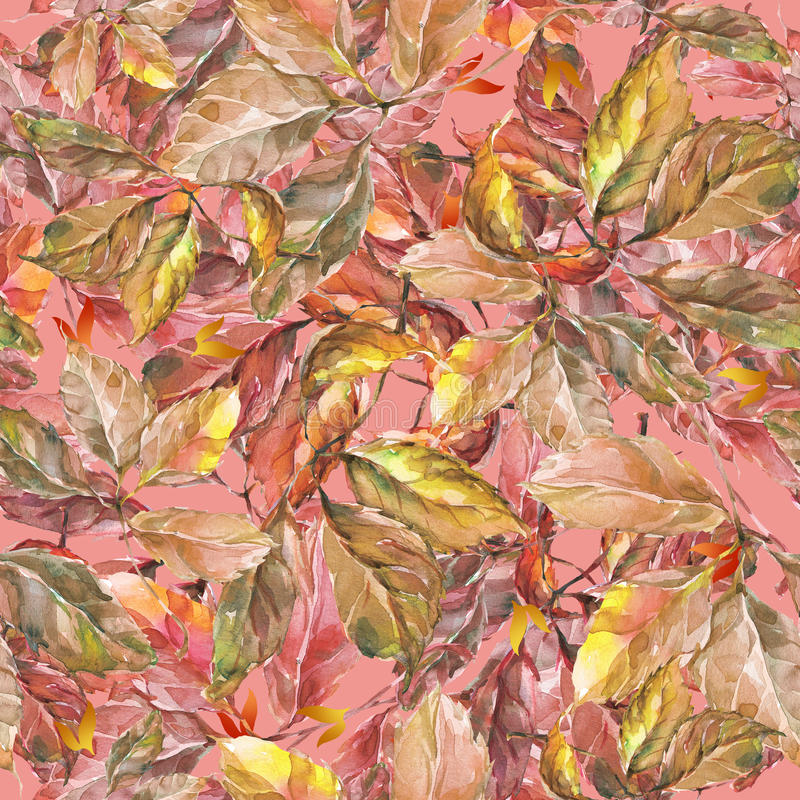 Watercolor grapes red and yellow leaves seamless. Seamless pattern with watercolor dry autumn wild grape red and yellow leaves on pink royalty free illustration