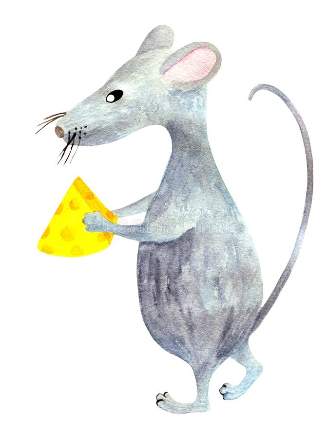 Watercolor gray cartoon mouse isolated on white background. Hand drawn Christmas rat holding a piece of cheese. Hand drawn zodiac stock image