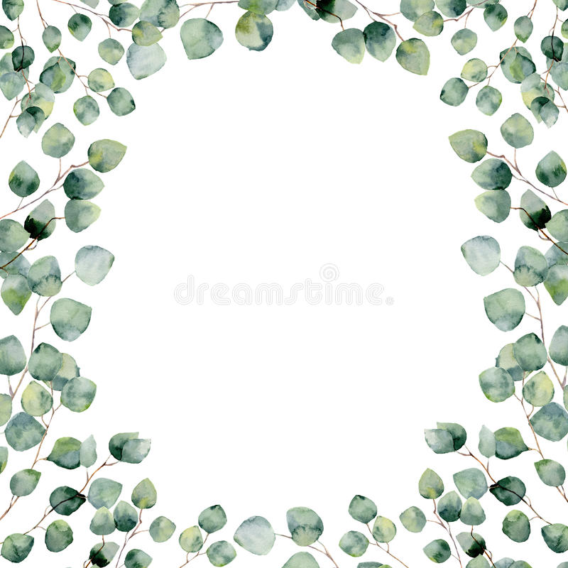 Watercolor green floral frame card with eucalyptus round leaves. royalty free illustration