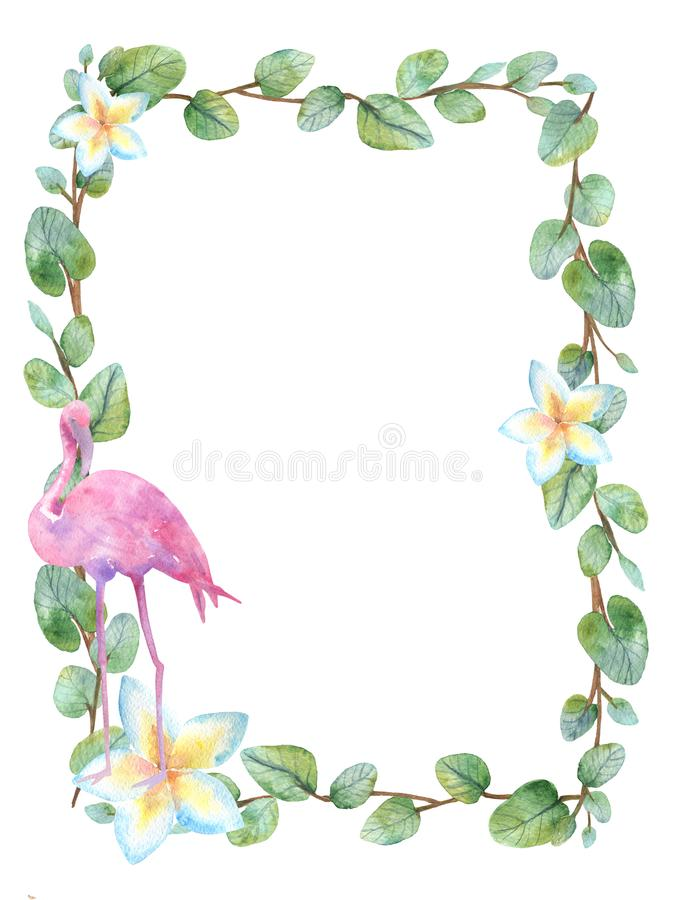 Watercolor green floral frame card with silver dollar eucalyptus round leaves. royalty free illustration