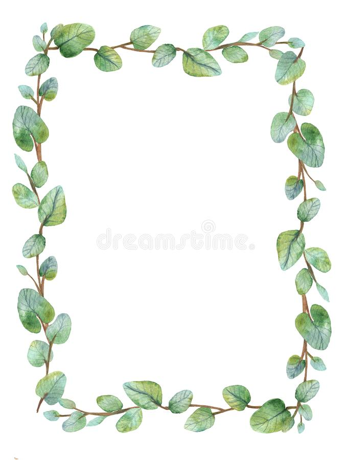 Watercolor green floral frame card with silver dollar eucalyptus round leaves. stock photo