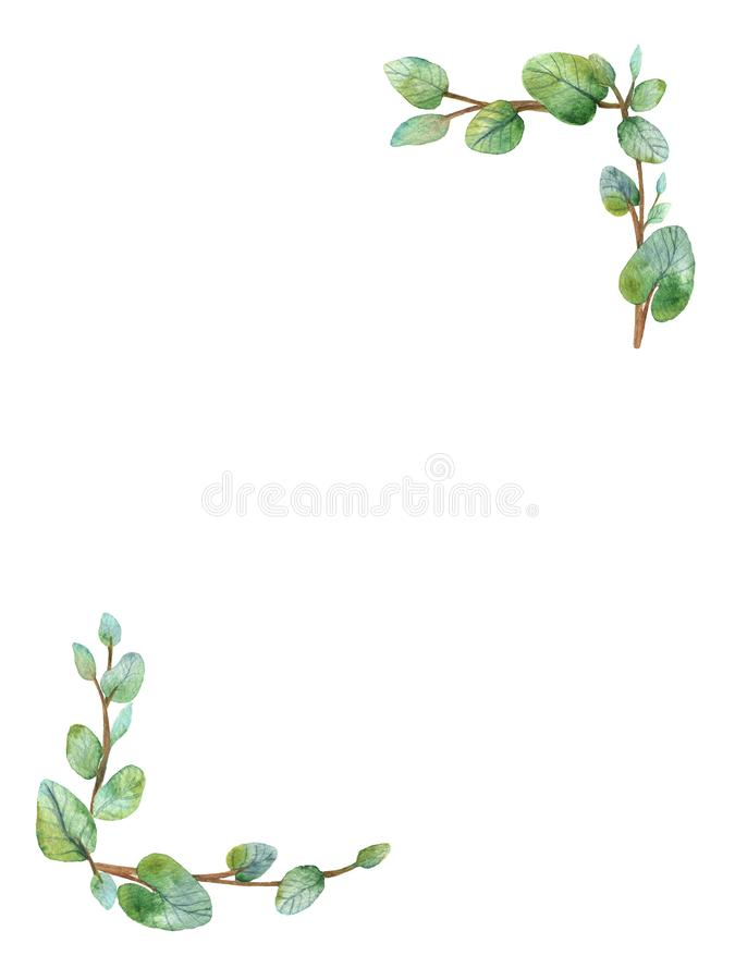 Watercolor green floral frame card with silver dollar eucalyptus round leaves. royalty free stock photos