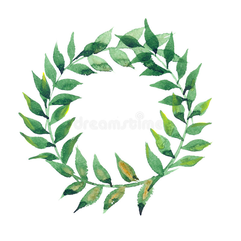 Watercolor green leaves wreath stock image