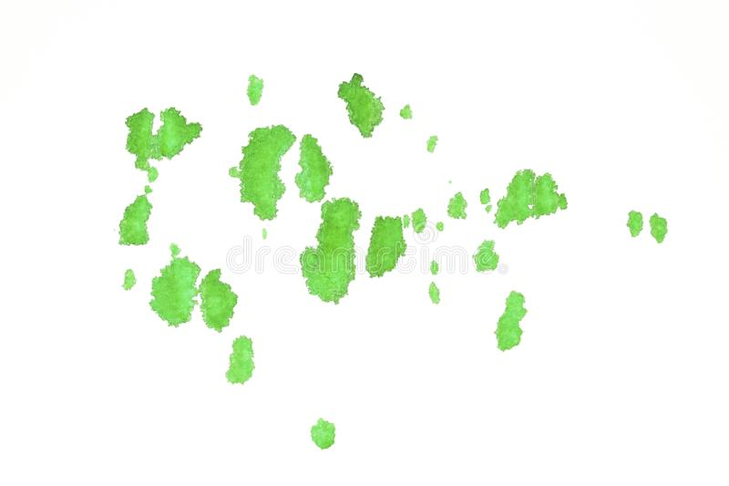 Watercolor green splatter paint on white paper royalty free stock photo