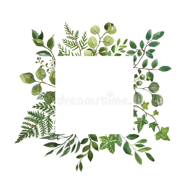 Free Watercolor Greenery Foliage Frame On White Background. Fresh Lush Herbs, Leaves, Green Branches Frame. Summer Floral Wreath Royalty Free Stock Image - 189920306