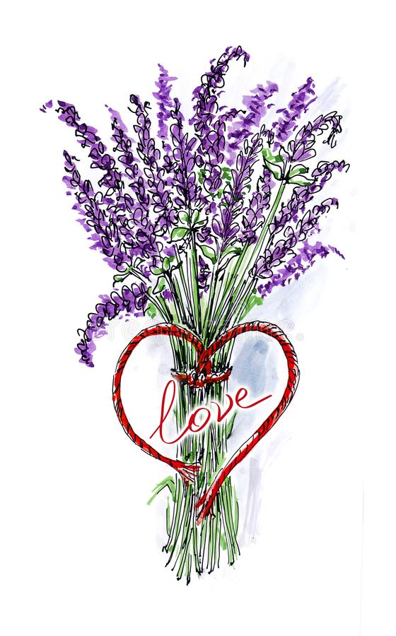 Watercolor greeting card with a bouquet of lavender royalty free illustration
