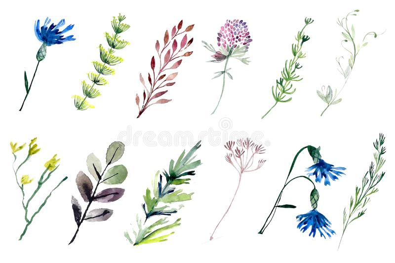 Watercolor Halloween Set. Cute illustrations for Halloween. royalty free stock images