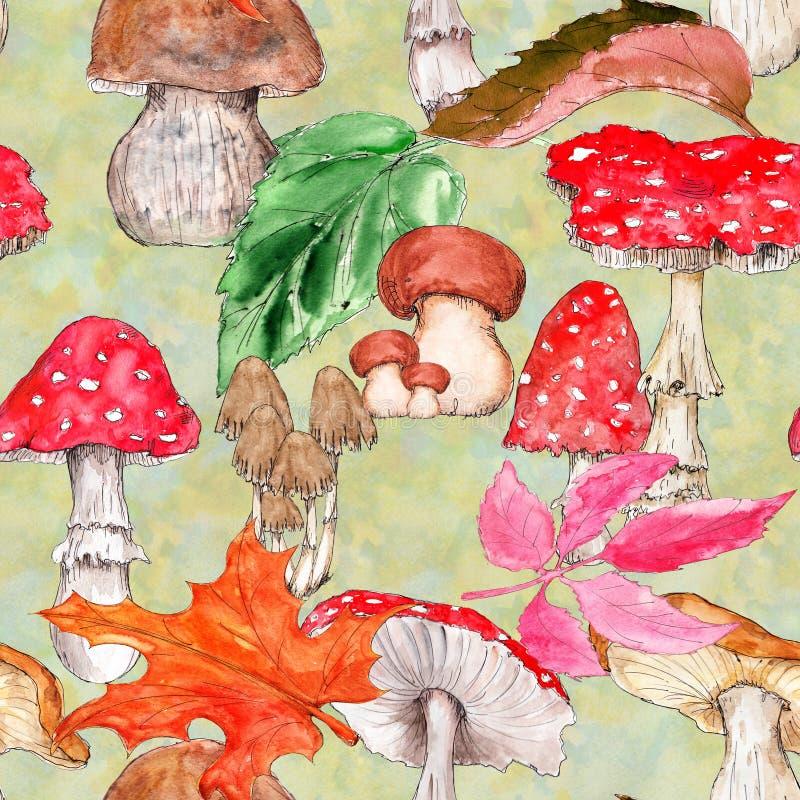 Free Watercolor Hand Drawn Artistic Colorful MUSHROOMS Fall  Season Vintage Seamless Pattern Royalty Free Stock Photos - 159842288