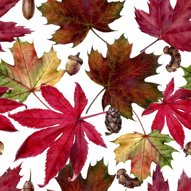 Watercolor hand drawn autumn leaf isolated seamless pattern. Seamless autumn pattern with autumn leaf maple,. Hand drawn watercolor illustration royalty free illustration