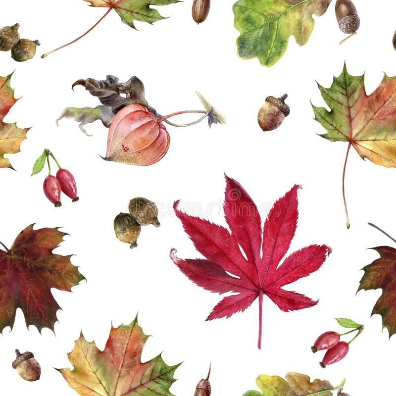 Watercolor hand drawn autumn leaf isolated seamless pattern. Seamless autumn pattern with autumn leaf maple, . Hand drawn watercolor illustration stock illustration