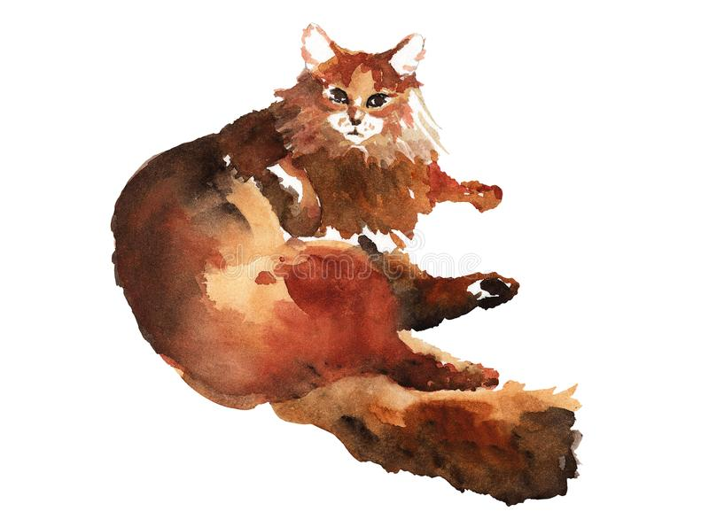 Watercolor hand drawn illustration of lazy lying fluffy cat. Isolated artwork. royalty free illustration