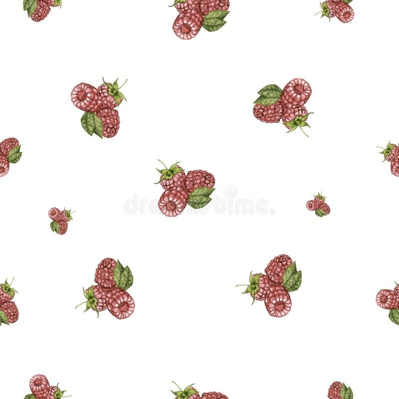 Watercolor hand drawn raspberry set seamless pattern. royalty free illustration