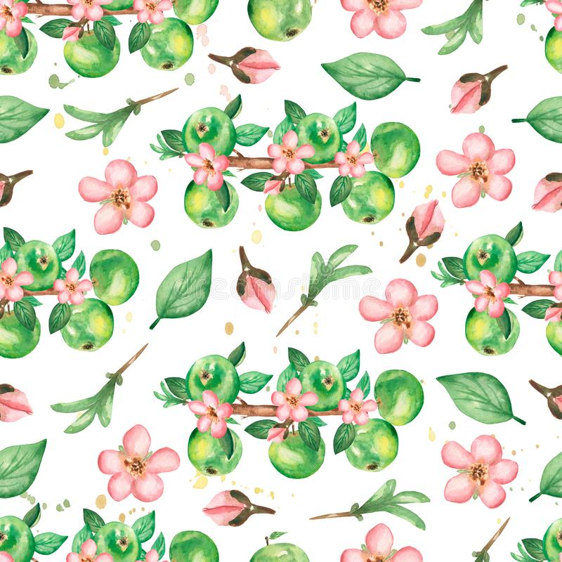 Watercolor hand drawn seamless pattern with branch of  apple flowers, leaves and green apples. beauttiful modern background with stock illustration