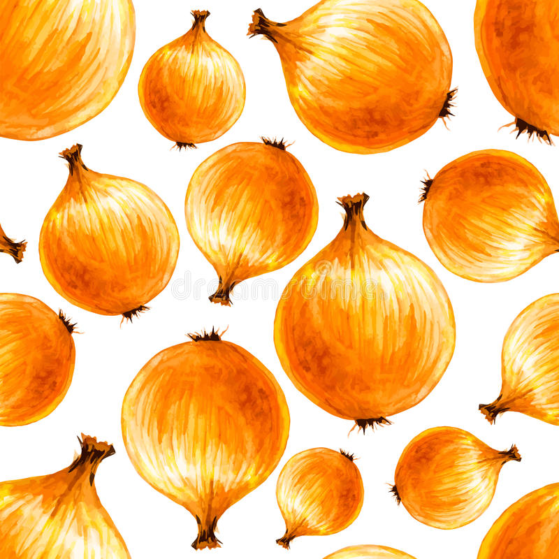 Watercolor hand drawn seamless pattern with bulb onions. royalty free illustration