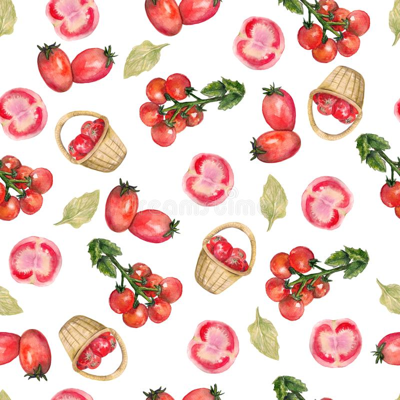 Watercolor hand drawn seamless pattern with red tomato in a wicker basket, cut tomato, cherry tomatoes on the white background. For used on card, wallpaper royalty free illustration