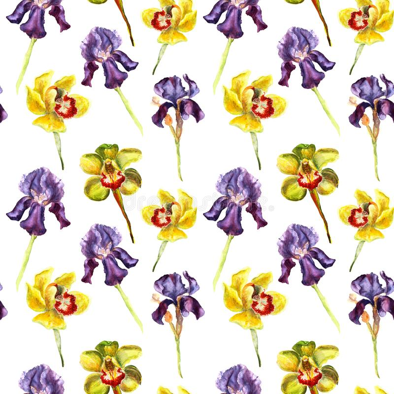 Watercolor hand drawn seamless pattern of violet beutifull iris and yellow and light green orchid on white background. royalty free illustration