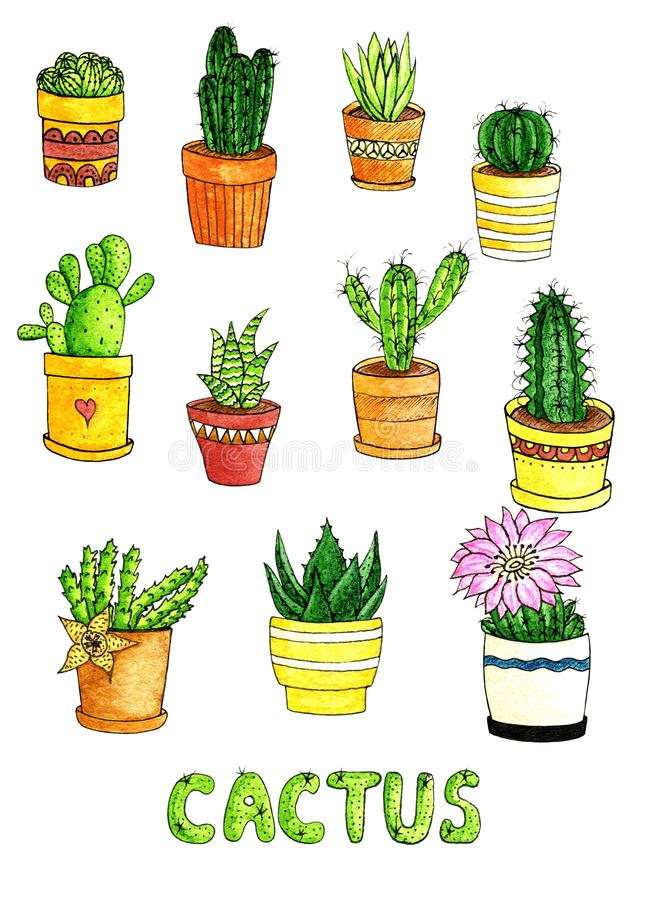 Watercolor hand drawn set of cactus and succulent. Colorful cacti. Illustration of houseplant in the pots, isolated objects on stock illustration
