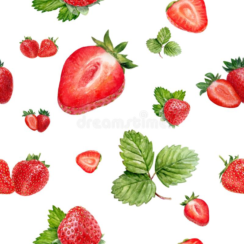 Watercolor hand drawn strawberry isolated seamless pattern. Seamless pattern with strawberry. Hand drawn watercolor illustration stock image