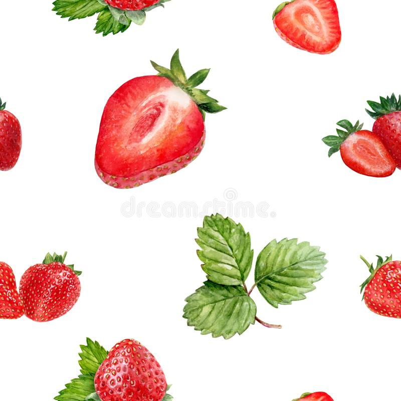 Watercolor hand drawn strawberry isolated seamless pattern. Seamless pattern with strawberry. Hand drawn watercolor illustration stock photography