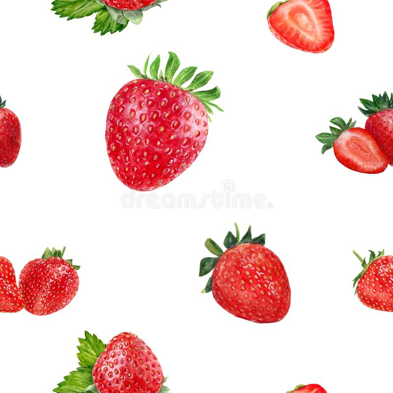 Watercolor hand drawn strawberry isolated seamless pattern. Seamless pattern with strawberry. Hand drawn watercolor illustration royalty free stock photo