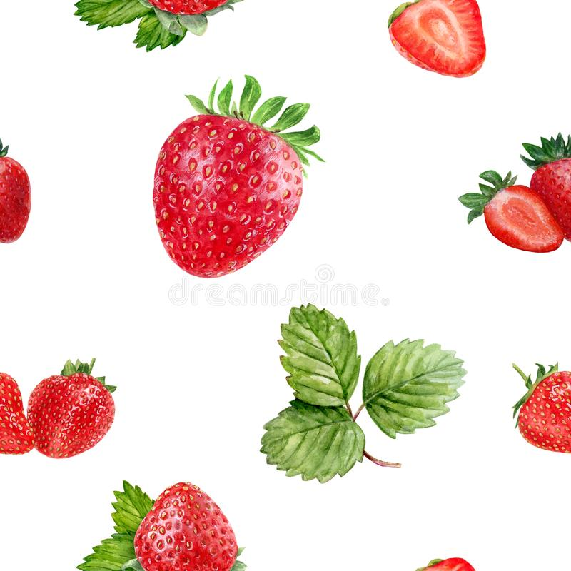 Watercolor hand drawn strawberry isolated seamless pattern. Seamless pattern with strawberry. Hand drawn watercolor illustration royalty free stock images