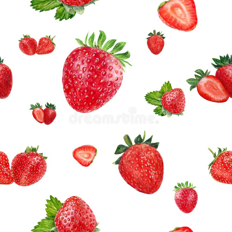 Watercolor hand drawn strawberry isolated seamless pattern. stock image