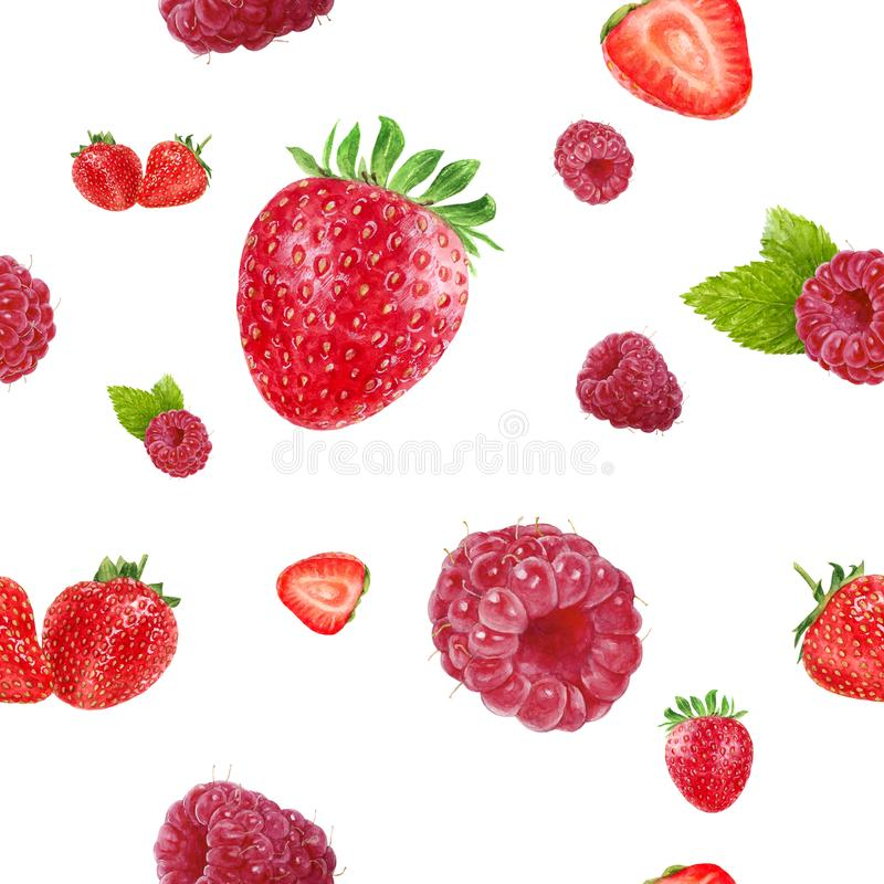 Watercolor hand drawn strawberry, raspberry isolated seamless pattern. Seamless pattern with strawberry, raspberry. Hand drawn watercolor illustration stock image