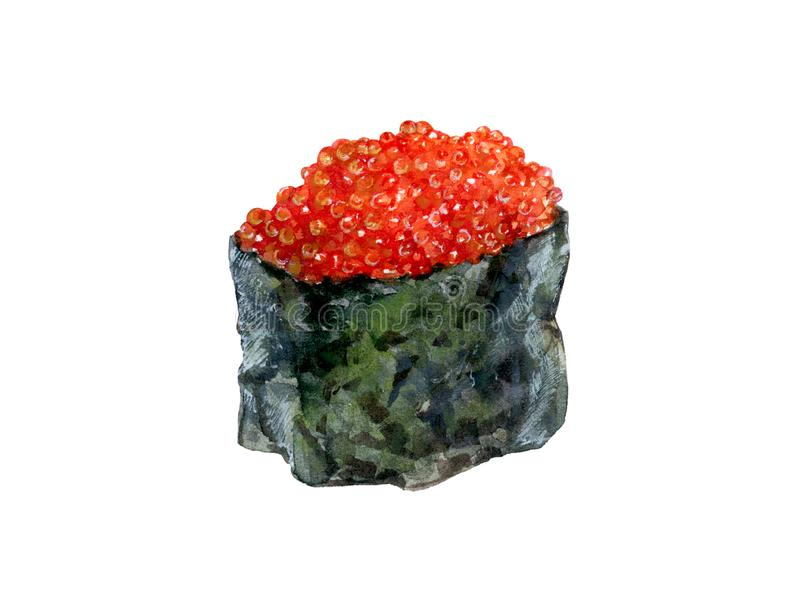Watercolor hand drawn sushi caviar realistic illustration isolated on white. stock illustration