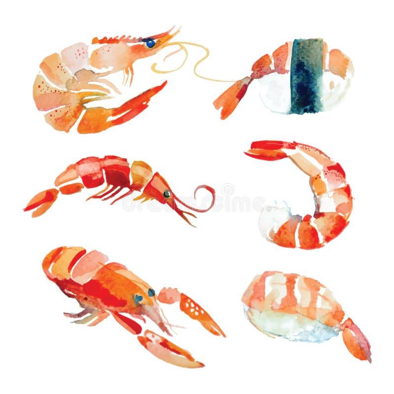 Watercolor hand drawn sushi, seafood. Watercolor hand drawn sushi, seafood, lobster in vector stock illustration