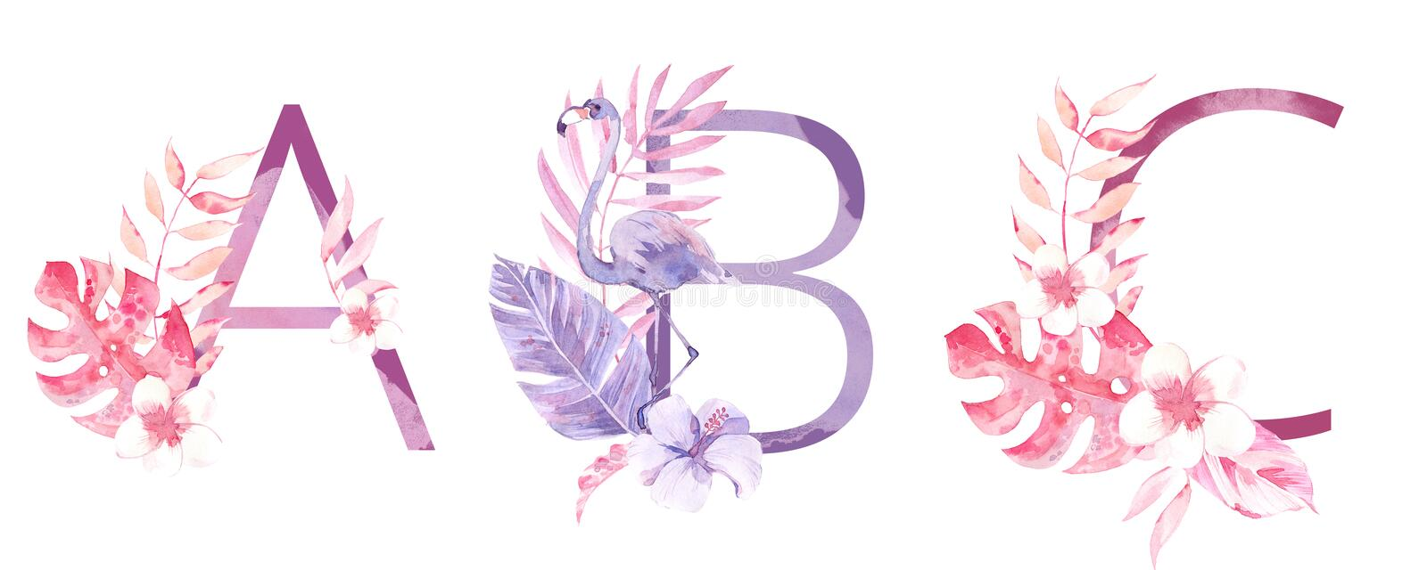 Watercolor Hand Drawn tropic letters monograms or logo. Uppercase A, B, C, with jungle herbal decorations. Palm and royalty free stock image