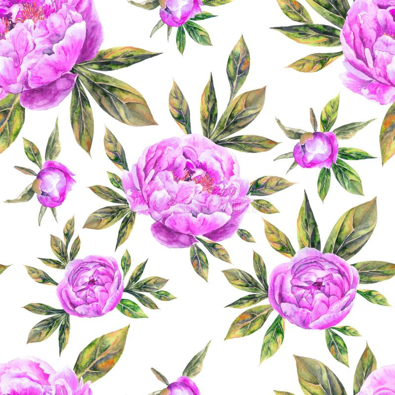 Watercolor hand drawn peone vintage seamless pattern with peony flowers and leaves stock photography