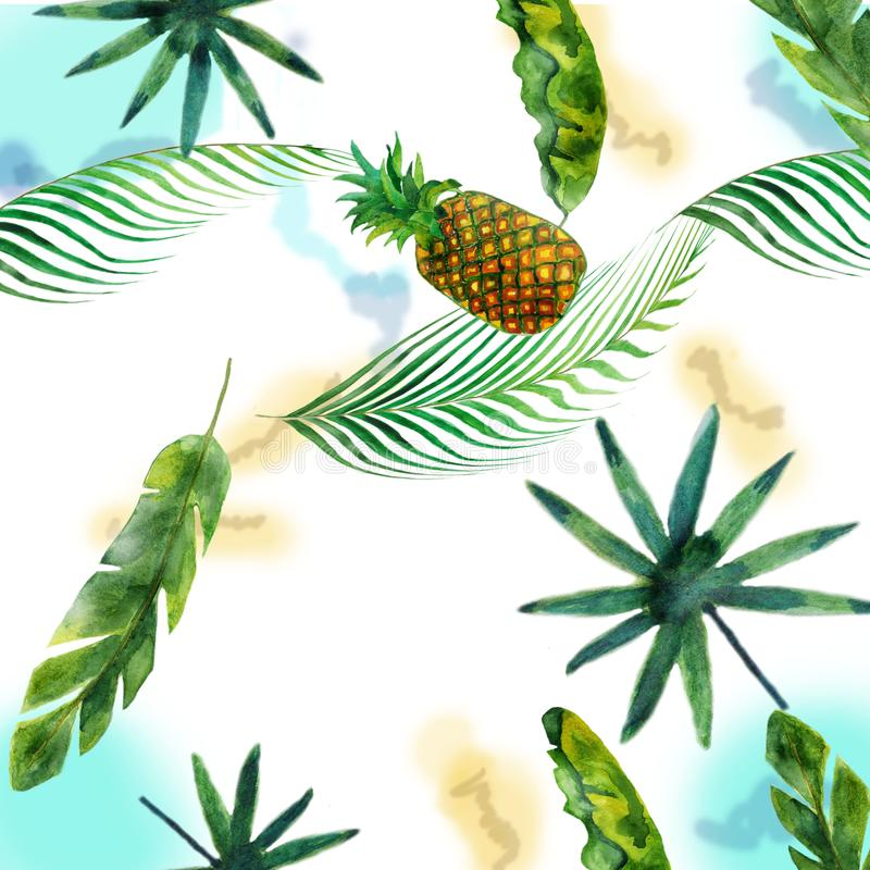 Watercolor hand-made illustration of banana, pineapple, coconut and palm trees, isolated on white background. vector illustration
